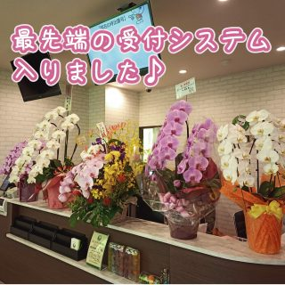 CureSmile導入記録  ~名古屋市名東区・泌尿器科~