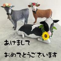 初詣、ガラガラ!~松陰神社~